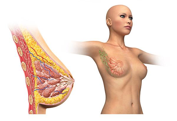 Lipofilling del seno: cosa accade nel post-operatorio?